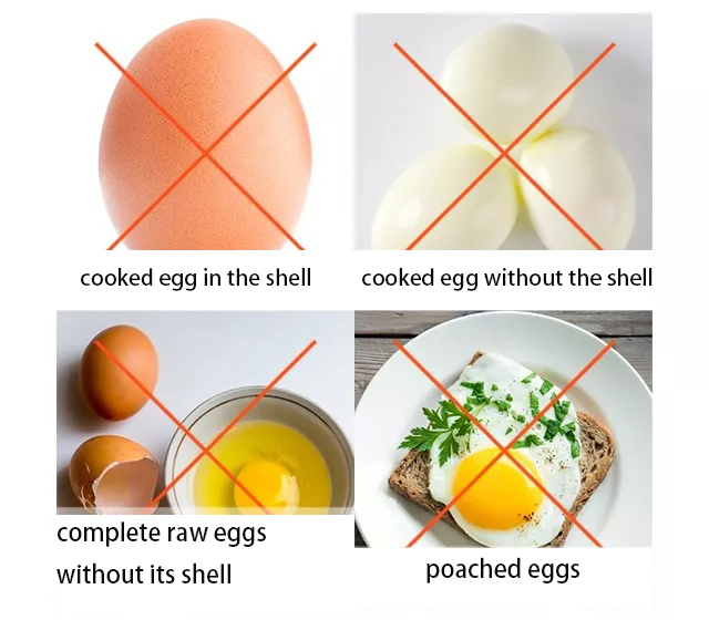 eggs-cant-be-directly-cooked-in-microwaves